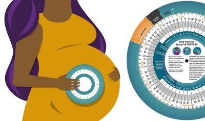De cuántas semanas estoy embarazada: gestograma y rueda de embarazo